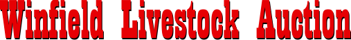 Winfield Livestock Auction
